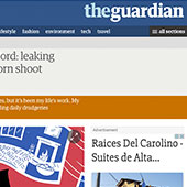 the guardian web article